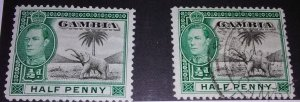 Presenting Gambia 132 mint and used
