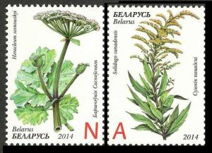2014Belarus1021-22Flowers - Invasive plants of Belarus. 3,80 €