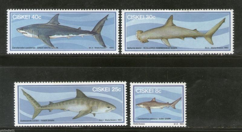 Ciskei 1983 Whale Sharks Fishes Marine Life Animals 4v MNH # 0281