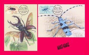 MOLDOVA 2019 Fauna Insects Beetles Rosalia Alpina & Beetle-Deer Maxicards Cards