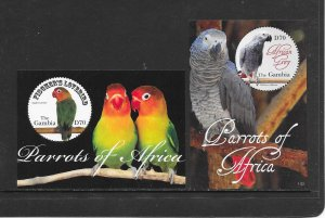 BIRDS -  GAMBIA #3371-72  PARROTS  MNH