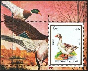 Fujairah. 1972. bl131a. Goose, birds, fauna. MNH.