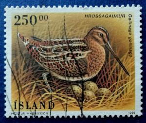 Iceland Birds Stamp Scott # 809 Used (I724)
