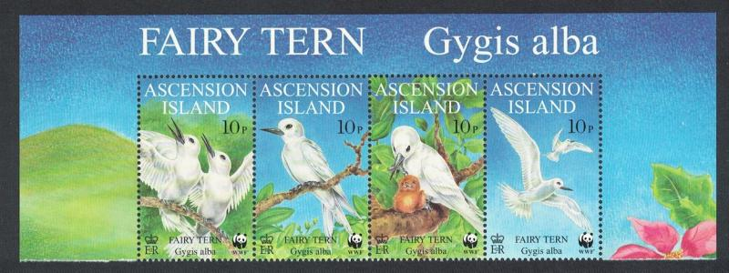 Ascension Birds WWF Fairy Tern Top Strip of 4v with Latin name SG#770-773