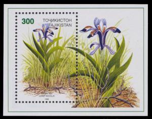 Tajikistan 1998 Scott #125 Mint Never Hinged