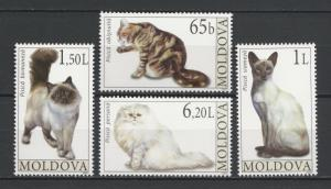 Moldova 2007 Animals, Pets, Cats 4 MNH stamps