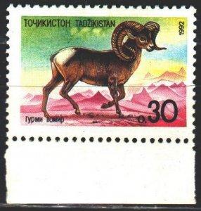 Tajikistan. 1992. 4. Mountain goat, fauna. MVLH.