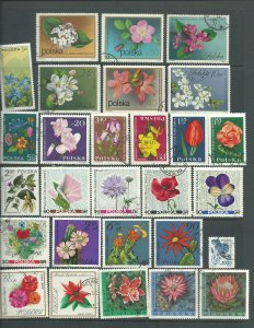 Flowers on 41 Polish Stamps