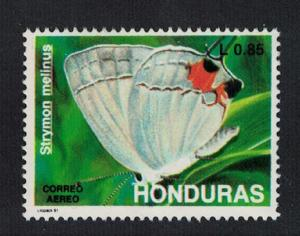 Honduras Gray hairstreak Butterfly 'Strymon melinus' SG#1128