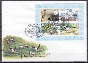 Belarus, Scott cat. 449. Various Birds s/sheet on a First day Cover.