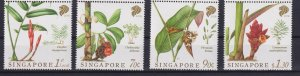 Singapore 2018 Plants - Native Gingers  (MNH)  - Flora