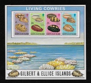 SHELLS - GILBERT & ELLICE ISLANDS #244a   MNH