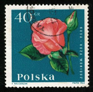 Flower, 40 Gr  (Т-6036)