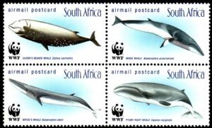 South Africa MNH Block 1101a WWF Whales 1998