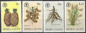 Sierra Leone 523, 525, 527, 529   MNH  United Nations FAO