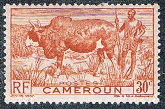Cameroun 304 MLH Zebu and herder (BP5421)