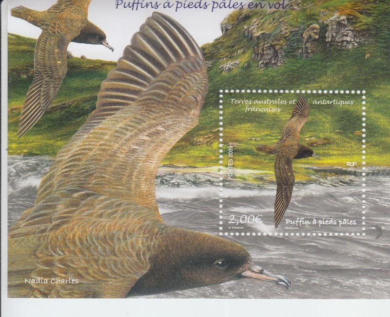 2019 FSAT Fr Antarctic Puffins in Flight SS (Scott NA) MNH
