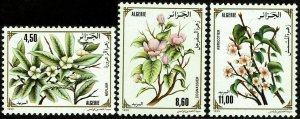 Algeria #979-81  MNH - Flowering Trees (1993)