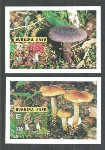 1995 Boy Scout Burkina Faso 2 SS 18th World Jamboree mushrooms fungi Imperf