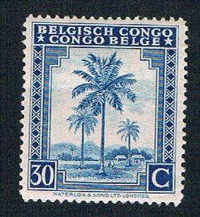 Belgian Congo 211 Used Oil Palm (BP18814)