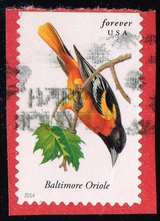 US #4886 Baltimore Oriole; Used (0.40)