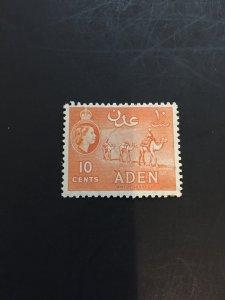 *Aden #49*