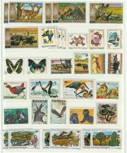Zebra Rhinos Butterflies Birds Plants Mushrooms Nature Rwanda MNH** Stamps 13976