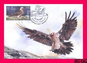 KYRGYZSTAN 2021 Nature Fauna Predatory Bird Raptor Vulture Hawk Maxicard Card