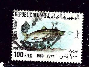 Iraq 494 Used 1969 Fish