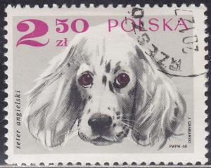Poland 1640 English Setter 2.50zł 1969