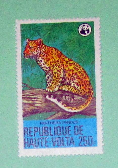 Burkina Faso - 511, MNH. Leopard; WWF. SCV - $14.00