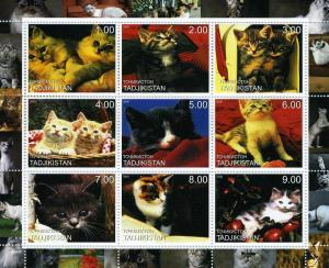Tajikistan 2000 Domestic Cats Sheet (9) perforated mnh.vf