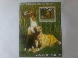 MOZAMBIQUE SHEET DOGS CATS ROTARY LIONS CLUB
