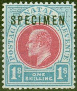 Natal 1902 1s Carmine & Pale Blue Specimen SG136s Fine & Fresh Mtd MInt