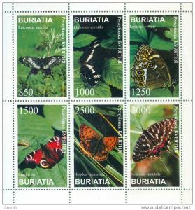 BURIATIA SHEET BUTTERFLIES INSECTS
