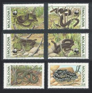 Moldova Protected Animals Snakes 6v SG#57-62 SC#72-74