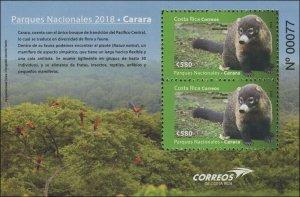Costa Rica 2018 Sc 699 Coati