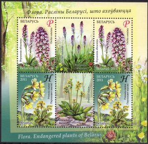 Belarus. 2011. bl82. Flowers flora. MNH.