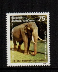 Sri Lanka  944  MNH cat $  7.50