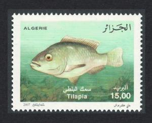 Algeria Nile Tilapia Fish 1v SG#1569