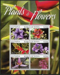 GUYANA 2016  FLOWERS AND PLANTS  SHEET OF  SIX  MINT NH
