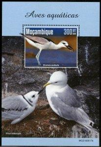 MOZAMBIQUE 2019  AQUATIC BIRDS SOUVENIR SHEET MINT NEVER HINGED