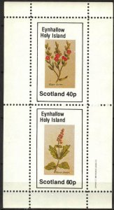 {E146} Eynhallow Scotland Flowers (5) Sh.2 MNH Cinderella !!