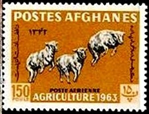 Afghanistan 1963 Karakul Sheep 150p MNH**