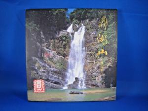 CHINA (PRC) 1995 SCOTT# 2554-2557  PRESENTATION FOLIO  (tinv)