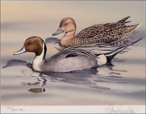 ALASKA #15 1999 STATE DUCK STAMP PRINT NORTHERN PINTAILS Sherrie Russell Meline
