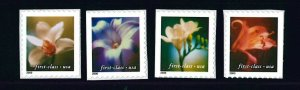 US Scott # 3454 - 3457 Set of Singles .34 (Non Denominated) Flowers, 2000 MNH