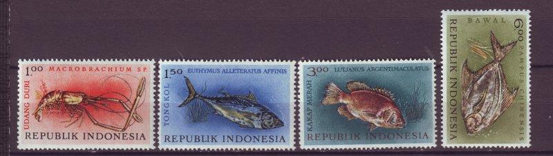 J25006 JLstamps 1963 indonesia set mnh #589-92 marine life