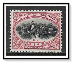 Mozambique Company #160 Picking Tea MH