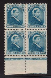 Newfoundland #49 Mint Plate Block